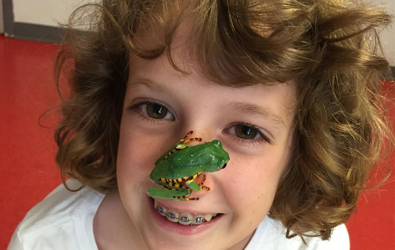 Campers Love Frogs!